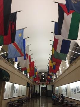 OSU represents their international students